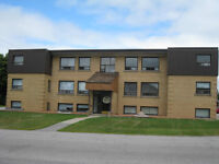 TWO BEDROOM SUITE - PROFESSIONALLY MAINTAINED  BUILDING