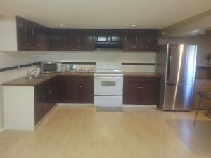Spacious 2 bedrooms walk out basement suite for rent