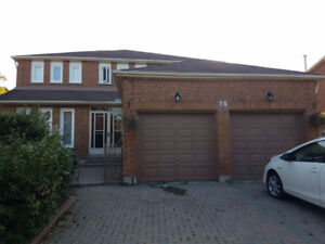 1,200 sq ft Fully Furnished 2 bedroom basement apartment Markham