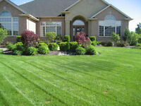 Quinte & Area Lawn Care Services