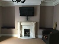Fireplace surround and marble