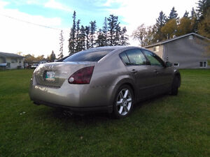 Nissan Maxima safetied