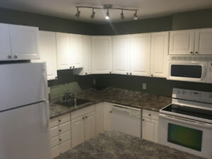 LUXURY 2 BEDROOM CONDO IN LINDENWOODS WITH POOL AND PARKING