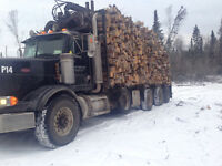Firewood 8 ft 120$ per cord plus hst
