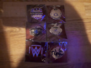 First 6 pins of wwe slam crate