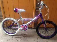 Girls concept mountain bike