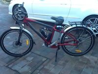 Electric Mountain Bike. ErgoMatic CT