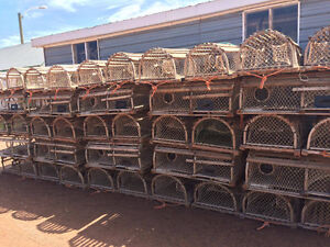 50 Traps for sale