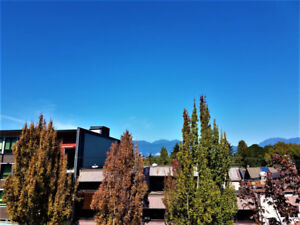 Kitsilano PENTHOUSE - Updates & Views! OPEN HOUSE this Weekend