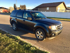 2009 Ford Escape XLT 4WD SUV