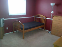 ❀Cozy, fully furnished room (new mattress) for $320!❀