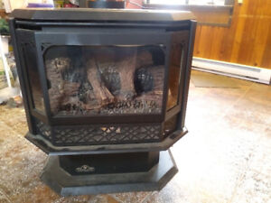 Beautiful Propane Fireplace