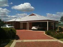 MODERN 4 X BED 2 X BATH WITH STUDY, FAMILY, SEPERATE LOUNGE High Wycombe Kalamunda Area Preview