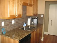 Executive Style One Bedroom, One Bathroom Condo for Rent