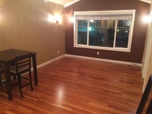 Newer silverberry condo, 2 bed/bath all utilities included