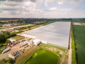 24.92 ACRE COMMERCIAL GREENHOUSE PROPERTY FOR SALE