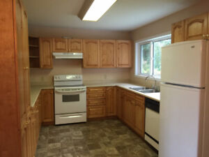Great three bedroom one bath home for rent