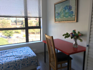 Near Skytrain Station Condo roommate (New Westminster Station)