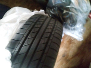 Rims and Tires $300 obo