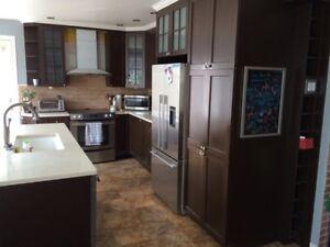 Cabinets de cuisine en bois avec comptoir quartz