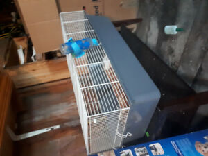 Small animal cage with shavings