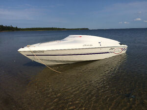 Baja Boss 232 for sale