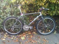 Marin Pine Mountain retro mountain bike