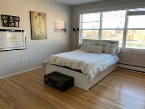Cute studio apartment downtown halifax for sublet