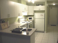 1 BED/1 BATH OPEN CONCEPT - New-Price!