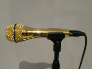 Peavy gold mic with stand