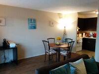 Sublet 1 bedroom apartment on Portage