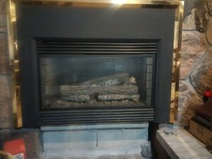 Hunter fireplace insert Natural Gas