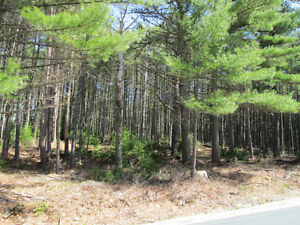 6 Building lots approximately one acre plus in size