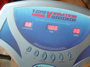 T-ZONE VIBRATION HEALTH TECHNOLOGY VT-12 Stratford Kitchener Area image 2