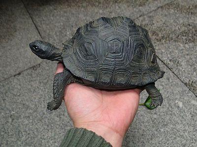 Aldabra Giant Tortoise Land Tortoise Turtle Resin Model Figurine 20 5Cm 2017New