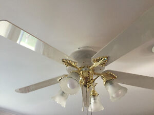 2 ceiling fans both work great!! With lights!