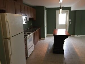 Bright large one bedroom basement apartment Wasaga