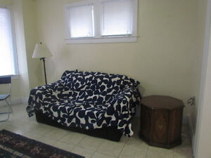 FEMALE ROOMMATE WANTED AT TWO BEDROOM APARTMENT Windsor Region Ontario image 6