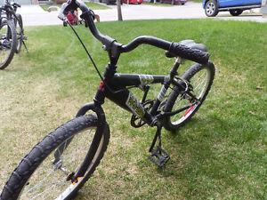 Black Raleigh Big Horn Bicycle