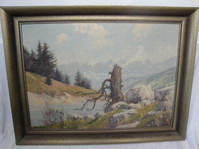 schönes Gemälde eines Alpensees signiert Waller !