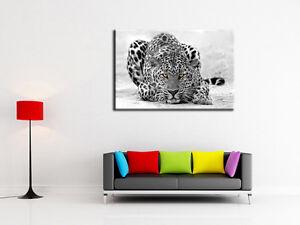 tableau d coration murale toile imprim e design animaux l opard r f 9028hx2 ebay. Black Bedroom Furniture Sets. Home Design Ideas