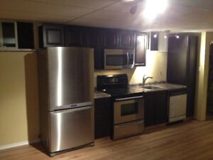 Brand New Basement Suite for rent in Beautiful Parkland