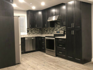 Open concept, beautifully renovated home for rent!
