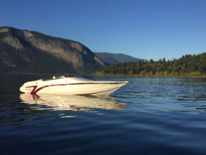 Velocity 260 Cuddy with 454 Performance/Offshore Style Boat