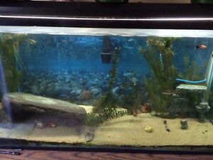 120g Aquarium For sale, great condition. MAKE AN OFFER