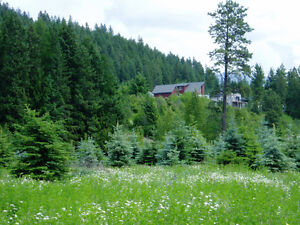 Build your own private acreage in the town of Creston, BC