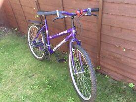 "£40 Universal Extreme 19"" ladies bike"