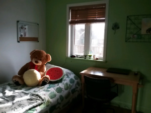 Belle grande chambre à louer
