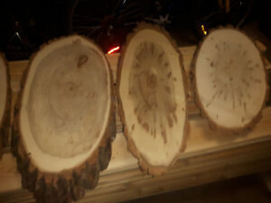 "Attention Woodworkers - ""Balm of Gilead"" Tree Slices"