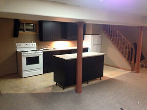1 bedroom basement apartment (New Sudbury/Minnow Outskirts)